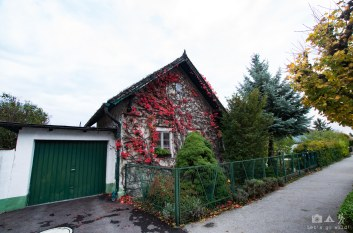 Autumn colors in the village